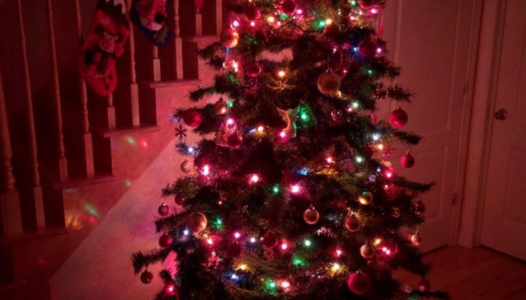 Christmas Tree / Sapin de Noël